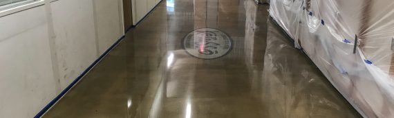 Bentonville Polished Concrete Flooring